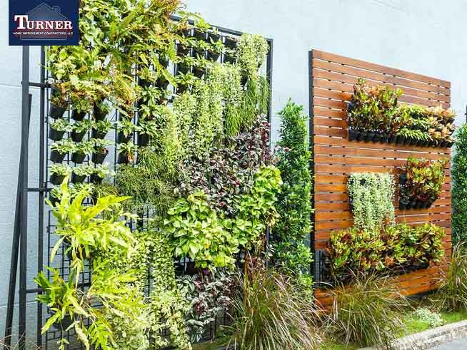 Cost-Effective Ways to Beautify Your Outdoor Space